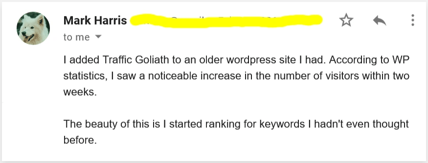 Traffic goliath user review